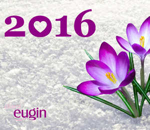 Llega el 2016: Un nuevo año por descubrir