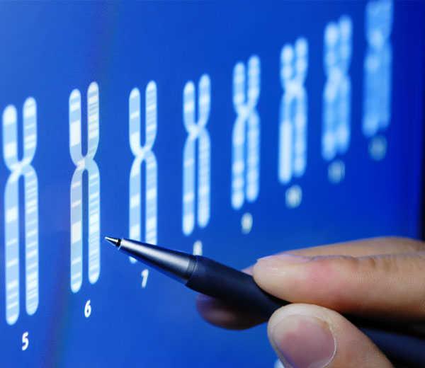 Análisis de Compatibilidad Genética: ¿qué es?